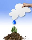 Agua de los conceptos para la vida la mano que sostiene el papel de la nube los descensos del agua está cayendo en las plantas Imagen de archivo
