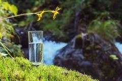 Agua de manatial limpia en un vidrio foto de archivo libre de regalías