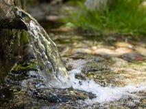 Agua de manatial natural en el bosque fotos de archivo libres de regalías