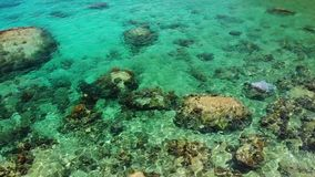 Agua de mar tranquilo cerca de piedras Agua de mar azul pacífica y cantos rodados grises en el lugar perfecto para bucear en Koh  metrajes