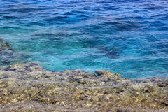 Agua de mar y fondo del arrecife de coral Imagen de archivo libre de regalías