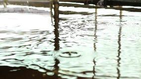 Agua de ondulación almacen de metraje de vídeo