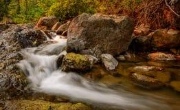 Agua de precipitación de la cala Foto de archivo libre de regalías