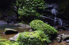 Agua de río Imagen de archivo libre de regalías