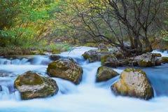 Agua de río borrosa con el árbol y rocas interiores y árboles y plantas verdes alrededor en el día brillante imagenes de archivo