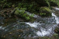 Agua de río clara Fotografía de archivo libre de regalías