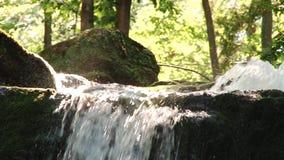 Agua de río de la montaña que fluye en las piedras Forest Splatter almacen de metraje de vídeo