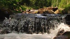 Agua de río de la montaña que fluye en las piedras Forest Splatter almacen de video