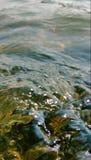 Agua de río ondulada Imagen de archivo libre de regalías