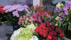 Agua de rociadura en diversas flores frescas en la floristería para el almacenamiento de larga duración almacen de metraje de vídeo