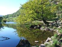 Agua de Rydal en resorte Foto de archivo libre de regalías