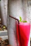 Agua de soda roja en el jardín Foto de archivo libre de regalías
