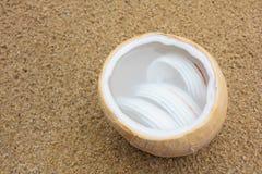 Agua del coco con la carne de coco en cáscara del coco en la arena Fotografía de archivo libre de regalías