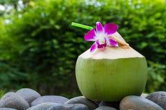 Agua del coco de la porción y adornamiento de la flor de la orquídea Foto de archivo libre de regalías