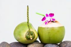 Agua del coco de la porción y adornamiento de la flor de la orquídea Fotografía de archivo libre de regalías