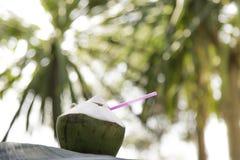 Agua del coco en la playa, colocada en una hoja del plátano, con un árbol de coco borroso en el fondo Es un bokeh verde fotografía de archivo