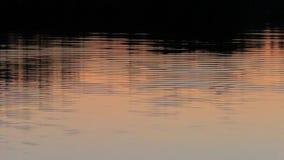 Agua del fondo en la puesta del sol por la tarde almacen de video