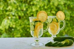 Agua del limón en dos vidrios con las rebanadas del hielo y del pepino en el fondo borroso de la naturaleza con el espacio de la  Fotos de archivo libres de regalías