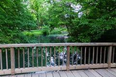 Agua del parque de naturaleza Fotografía de archivo libre de regalías