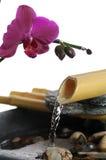 Agua del zen foto de archivo libre de regalías