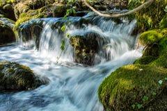 Agua dulce Fotografía de archivo libre de regalías