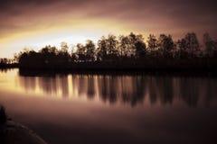 Agua en bosque imagen de archivo libre de regalías
