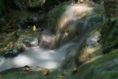 Agua en el movimiento Foto de archivo libre de regalías