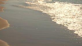 Agua en orilla Arena y pequeñas ondas almacen de metraje de vídeo
