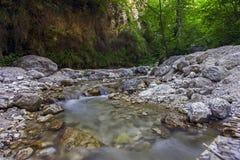 Agua en un bosque Italia Fotografía de archivo libre de regalías
