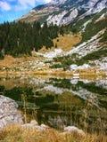 Agua esmeralda. Abetos reflejados en el lago de la montaña. Imagen de archivo libre de regalías
