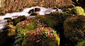 Agua fluído en el río Correze Fotografía de archivo libre de regalías