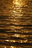 Agua Gold Coast de la puesta del sol Fotografía de archivo