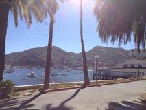 Agua hermosa de las palmeras del muelle de los barcos del paseo imagen de archivo libre de regalías