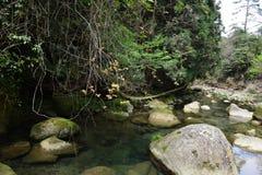 Agua hervida bajo caídas Fotografía de archivo