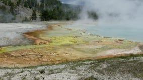 Agua hirvienda caliente del parque nacional de Yellowstone almacen de video