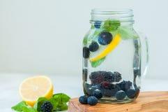 Agua infundida del detox con el pasto del arándano y de la menta de la zarzamora del limón imagen de archivo libre de regalías