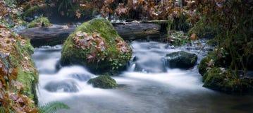 Agua larga de la exposición que fluye abajo de la corriente Moss Covered Rocks Fotografía de archivo libre de regalías
