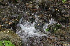 Agua lechosa Imagenes de archivo