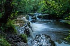 Agua lenta de la escena de la cascada Foto de archivo libre de regalías