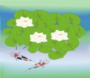 Agua Lillys en el agua con Koi Carp stock de ilustración