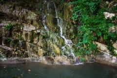 Agua mineral de la montaña de la primavera Fotografía de archivo libre de regalías