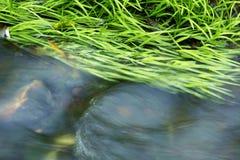 Agua, montañas, flujo Fotografía de archivo