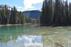 Agua montañosa Imagenes de archivo