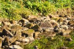 Agua natural de la cascada hermosa del palacio fotografía de archivo
