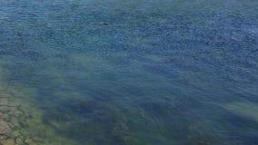 Agua ondulada almacen de metraje de vídeo