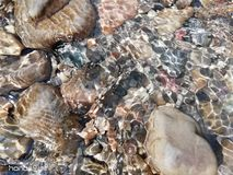 Agua piedra Montaña Lago natural imágenes de archivo libres de regalías