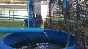 Agua plástica azul del dren del tubo al cuenco almacen de metraje de vídeo