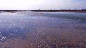 Agua poco profunda cerca de la orilla almacen de metraje de vídeo