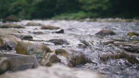 Agua potável que flui no fim rochoso do rio acima Córrego da água no rio da montanha video estoque