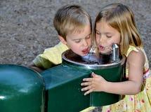 Agua potable de los cabritos Foto de archivo libre de regalías